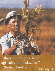There are no miracles in agricultural production. --  Norman Borlaug mit Getreide